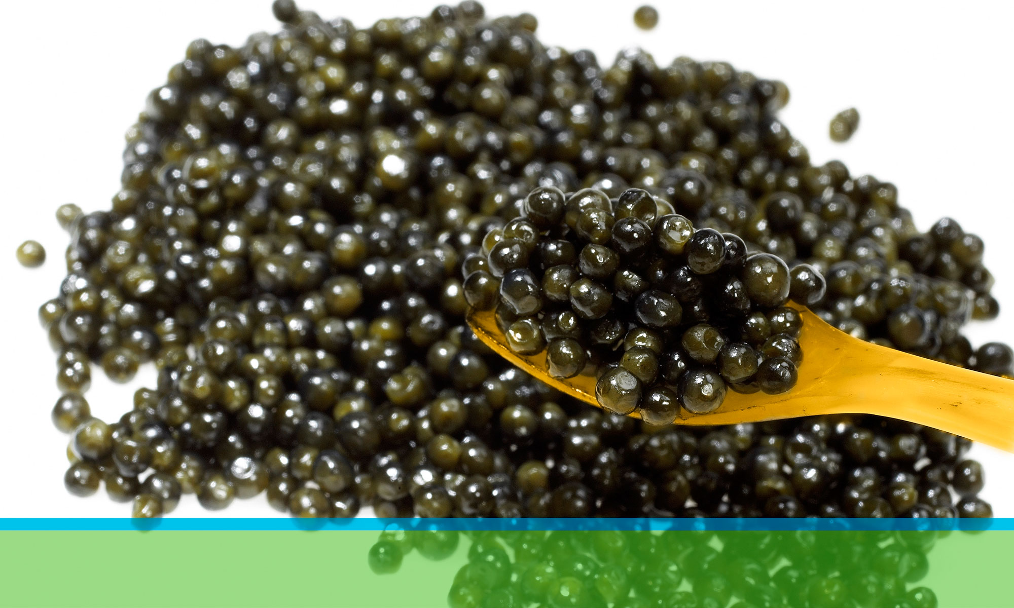 Végétal Alternative au Caviar vegancaviarluxury.com